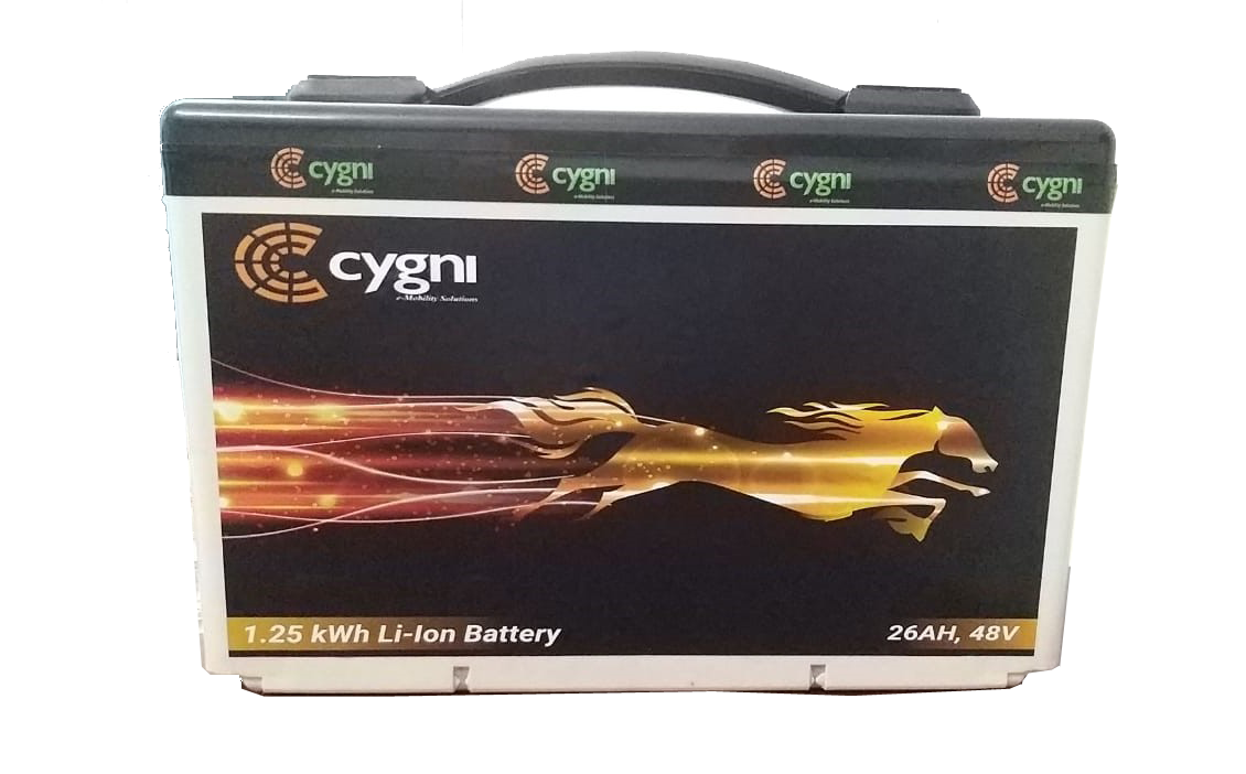 1.25 kWh Li-Ion (NMC) Battery Pack